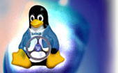 Linux Remote Development Program